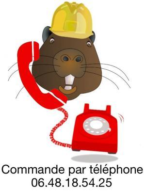 Commande par te le phone